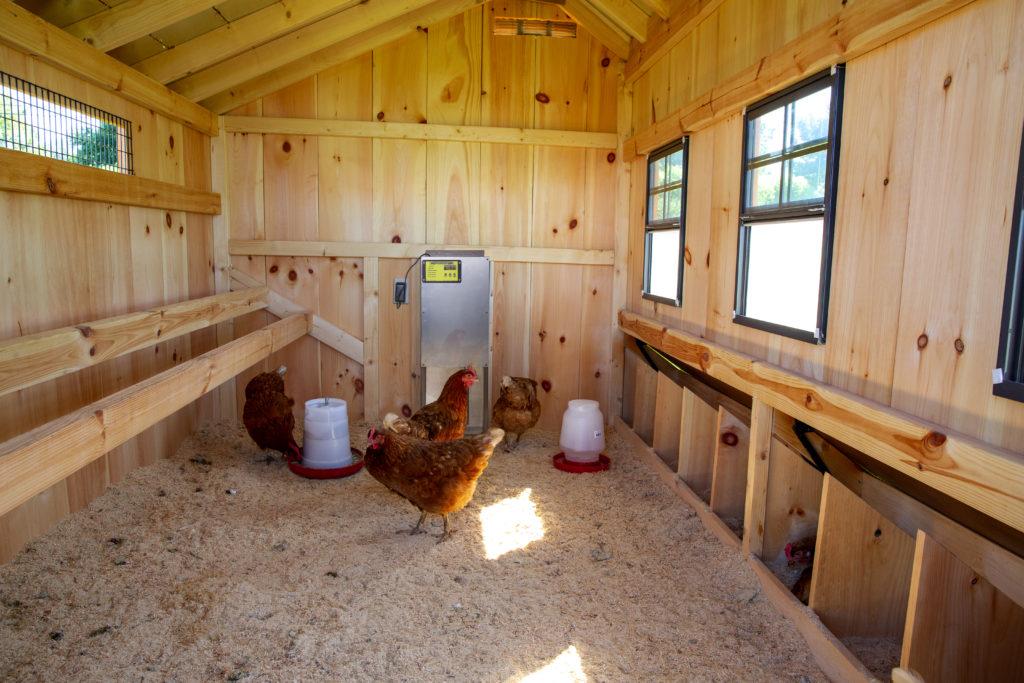 smart coop door installed 2